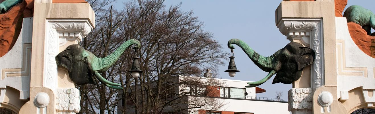 함부르크 - 쇼핑, 도시적인, 역사적인, 나이트라이프