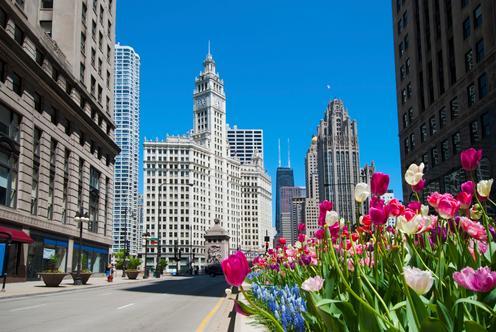 시카고 호텔 특가 상품