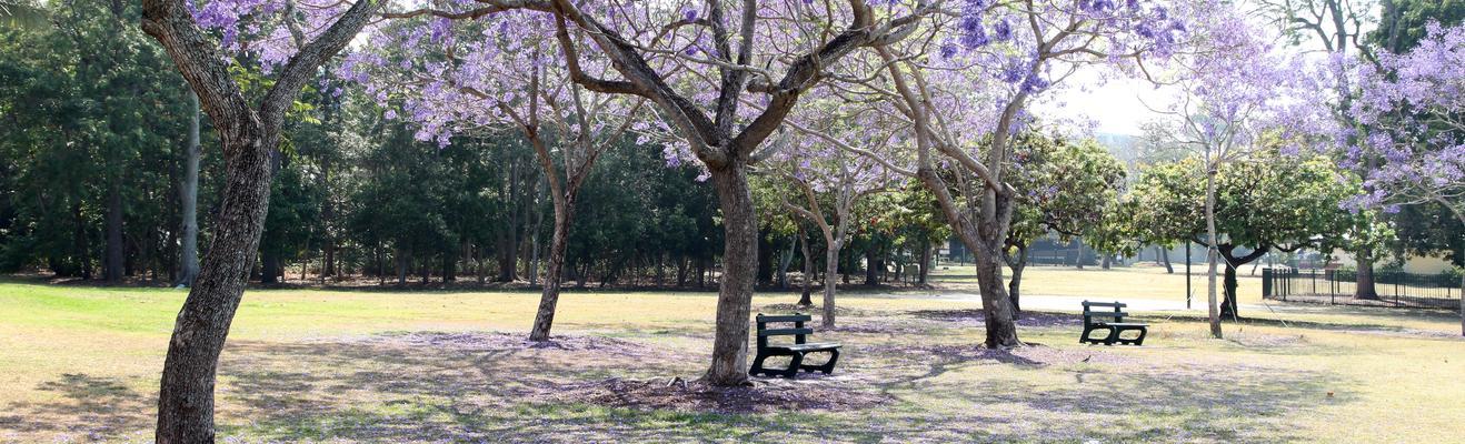 브리즈번 - 해변, 도시적인
