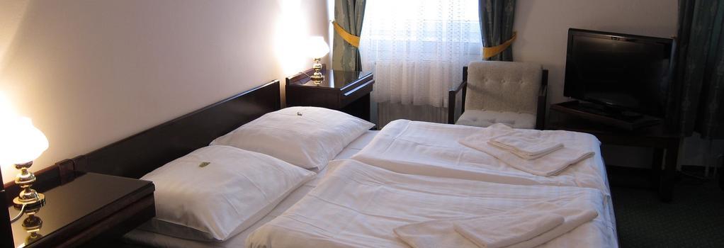 Hotel Omega - 브르노 - 침실
