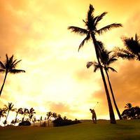 와일레아 비치 리조트 - 메리어트, 마우이 Golf course