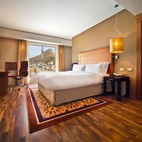 힐튼 케이프 타운 시티 센터 호텔 Guest room