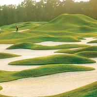 힐튼 헤드 메리어트 리조트 & 스파 Golf course