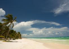 The Beach Tulum - 툴룸 - 해변