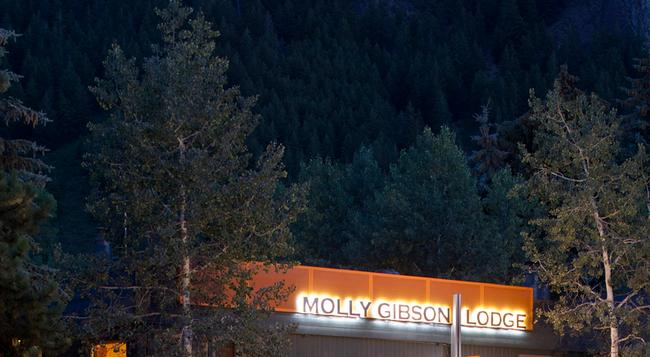 Molly Gibson Lodge - 아스펜 - 건물