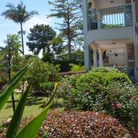 African Roots Guesthouse Property Grounds