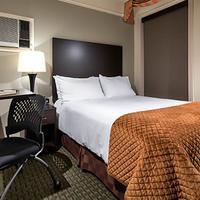 더 윌로즈 호텔 Guestroom