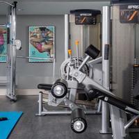 Staybridge Suites Atlanta - Midtown Gym