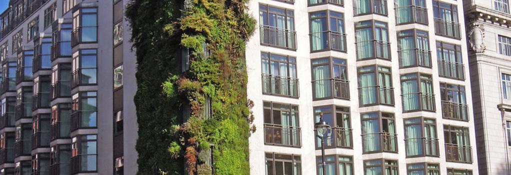 디 아테네움 - 런던 - 건물