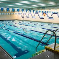 반더빌트 Ymca 호스텔 Indoor Pool
