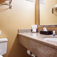 Ramada East Syracuse Carrier Circle Bathroom