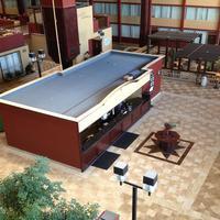 DFW 에어포트 호텔 & 컨퍼런스 센터 Lobby