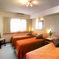 사미엔토 팰리스 호텔 Habitación Triple Individual