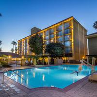 더 호텔 풀러톤 Outdoor Pool