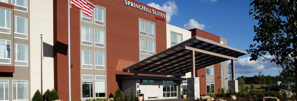 SpringHill Suites by Marriott Pittsburgh Latrobe - Latrobe - 건물