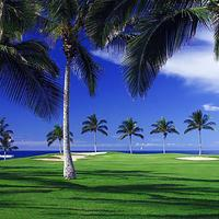 와이콜로아 비치 매리어트 리조트 앤드 스파 Golf course