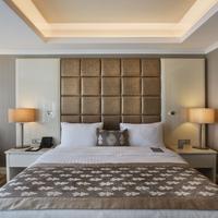 데데만 보스탄치 이스탄불 호텔 앤 컨벤션 센터 Guestroom