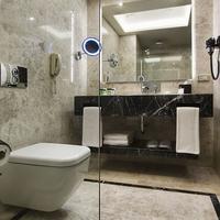 데데만 보스탄치 이스탄불 호텔 앤 컨벤션 센터 Bathroom