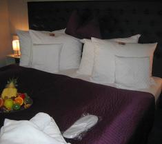 Hotel Ambassador-Berlin-Grünau