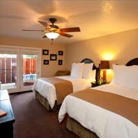 Sycamore Mineral Springs Guest room