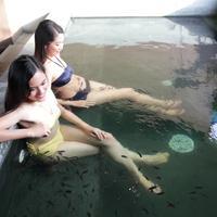 호텔 H2O Spa