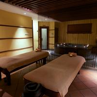더 노덤 올 스위트 페낭 Treatment Room