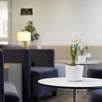 작센파크 호텔 Lobby Lounge