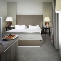 작센파크 호텔 Guestroom