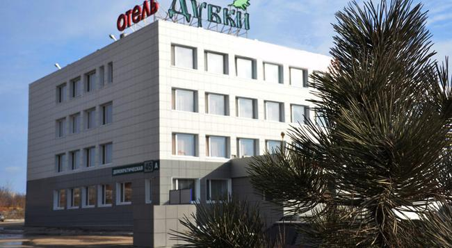 Dubki Hotel - 사마라 - 건물