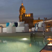 몰리나 라리오 호텔 말라가 Outdoor Pool