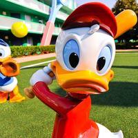 Disney's All-Star Sports Resort Property Grounds