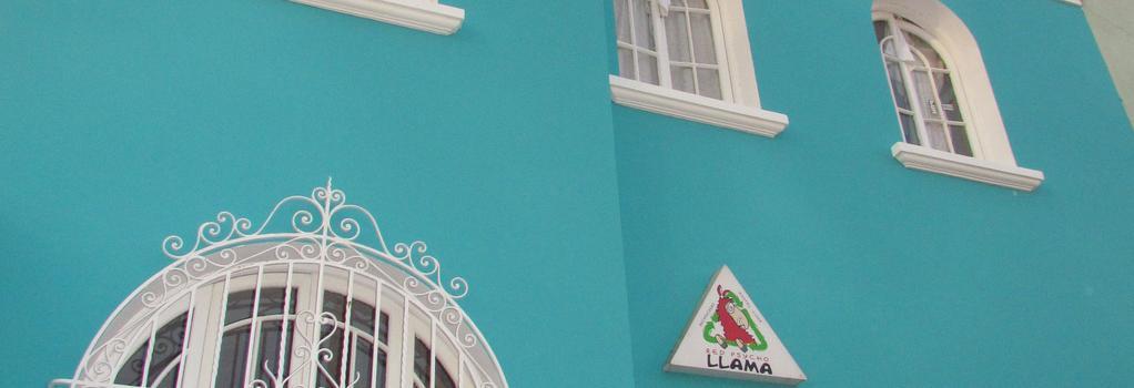 Red Llama Eco Hostel - 리마 - 건물