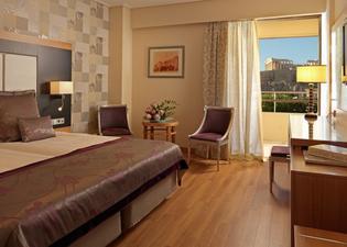 디바니 팰리스 아크로폴리스 호텔