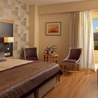 디바니 팰리스 아크로폴리스 호텔 Guestroom