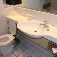 호텔 온 세인트 조지 Bathroom