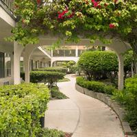 캘리포니아 스위트 호텔 Property Grounds