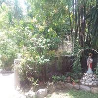 카사 문다 비앤비 Garden