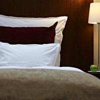 슈타이겐버거 메트로폴리탄 프랑크푸르트 호텔 Guest room