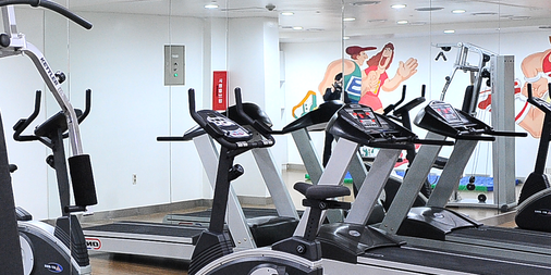 임피리얼 팰리스 부티크 호텔, 이태원 - 서울 - 체육관