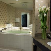 호텔 젤로스 샌프란시스코 Guest room