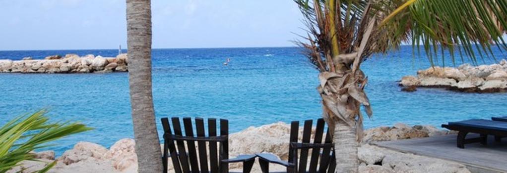 Lions Dive & Beach Resort Curaçao - 빌렘스타트 - 해변